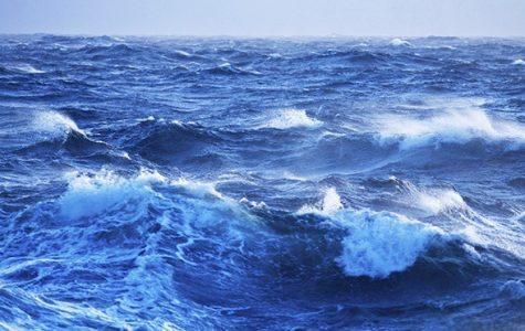 Atlantic Ocean Brims with Activity