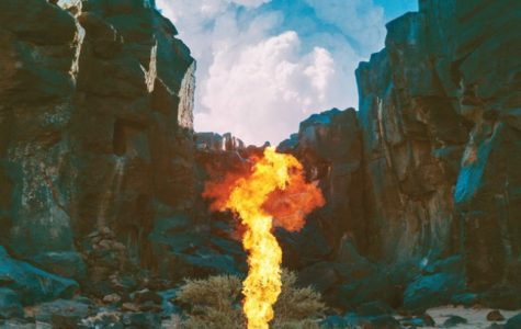 """Migration"" by Bonobo Review"