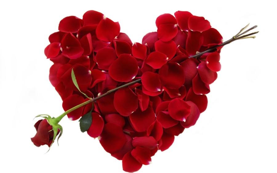 Who's Your Senior Valentine?