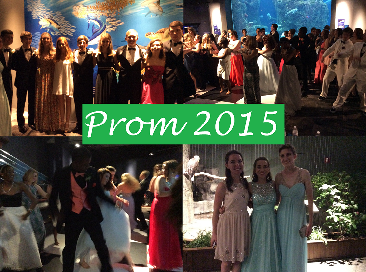 Prom 2015 Pictures (Part 3)