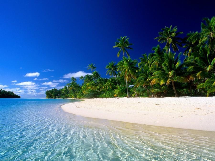 Who Needs College? Buy an Island!