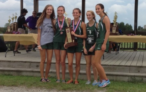 Victory for AMHS Cross Country Runners