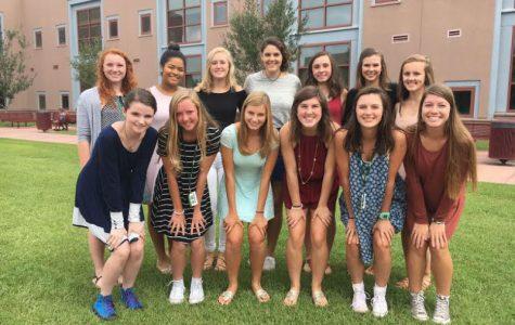 Meet the 2016 AMHS Volleyball Team