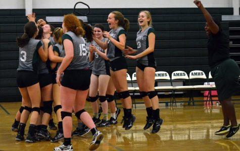 AMHS Volleyball Advances in Playoffs