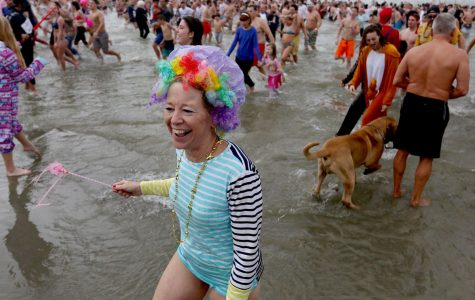 Hundreds 'bear' the cold at this year's Polar Bear Plunge