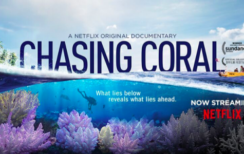Chasing Coral Review