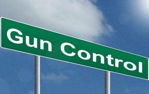 Point Counterpoint – Gun Control