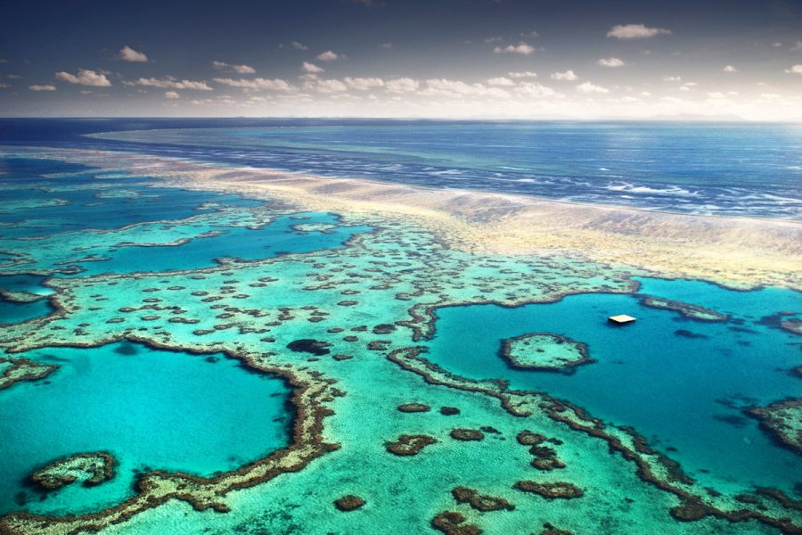 The+Great+Barrier+Reef+in+Australia