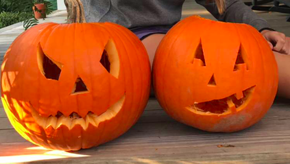 Leftover Pumpkins? Here is What You Can do With Them.