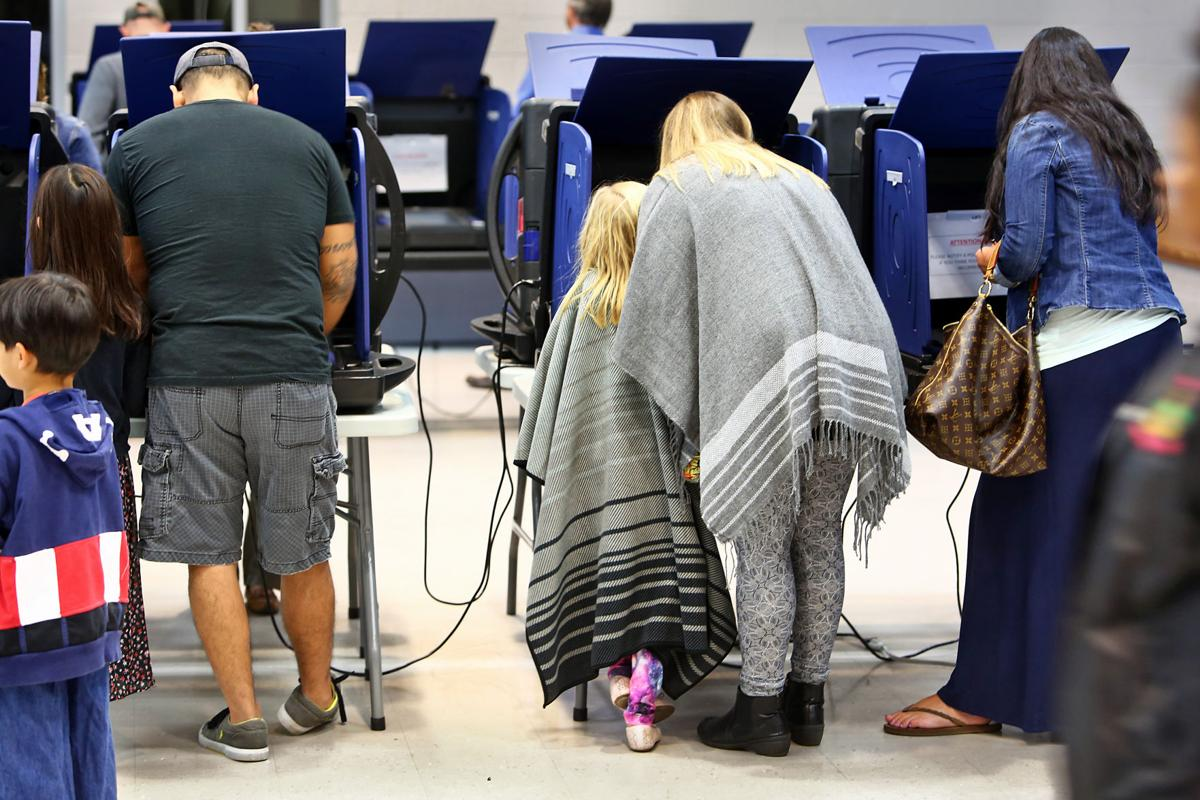 Mother and Daughter Voting