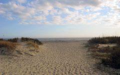 Best Beaches in South Carolina