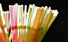 Pros and Cons of the Straw Ban