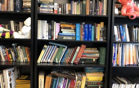 Ms. Hurt's bookshelf features literature textbooks and a few of her famous stuffed animals among other books.