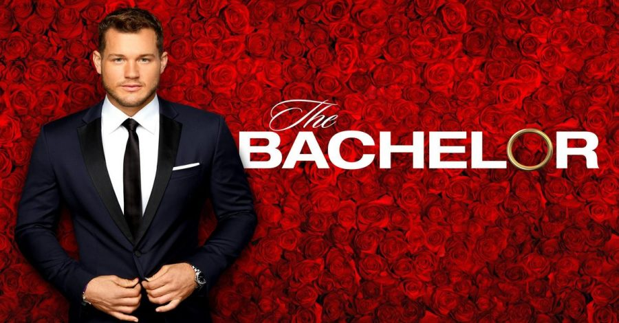 The Bachelor Update: Weeks 3-6