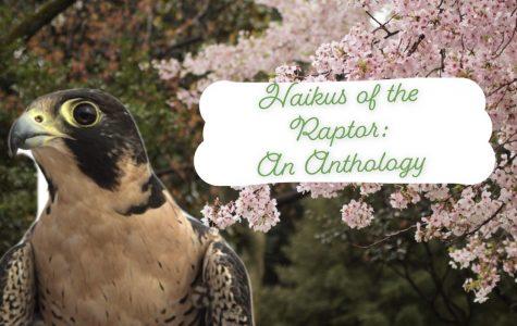 Haikus of the Raptor: An Anthology