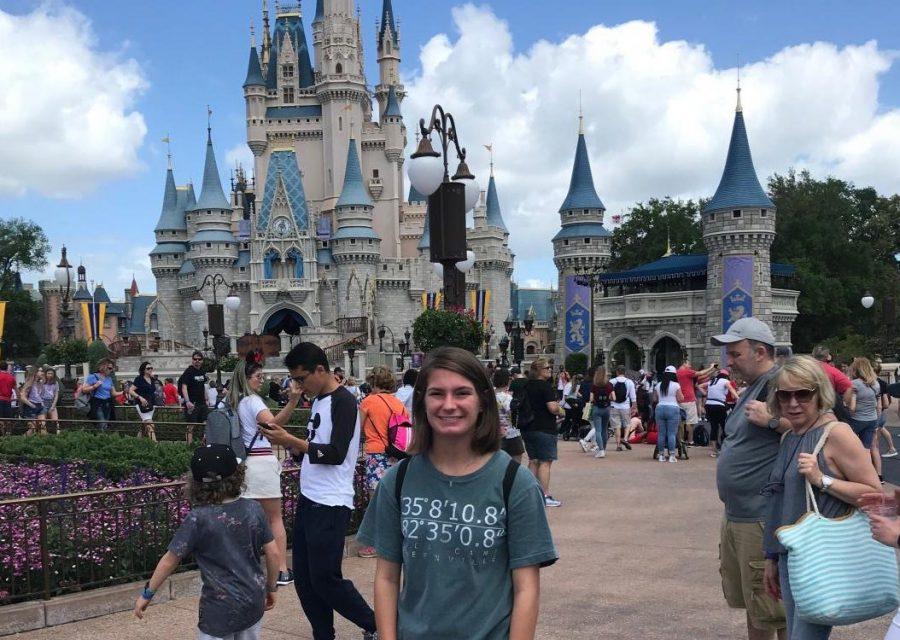 Me investigating the corruption of DisneyWorld