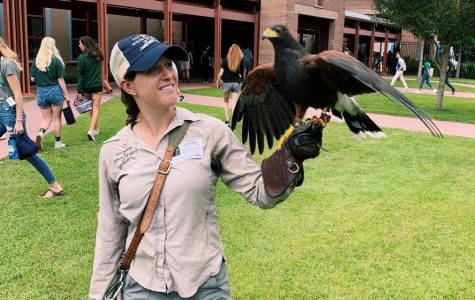 Raptor Day Gallery