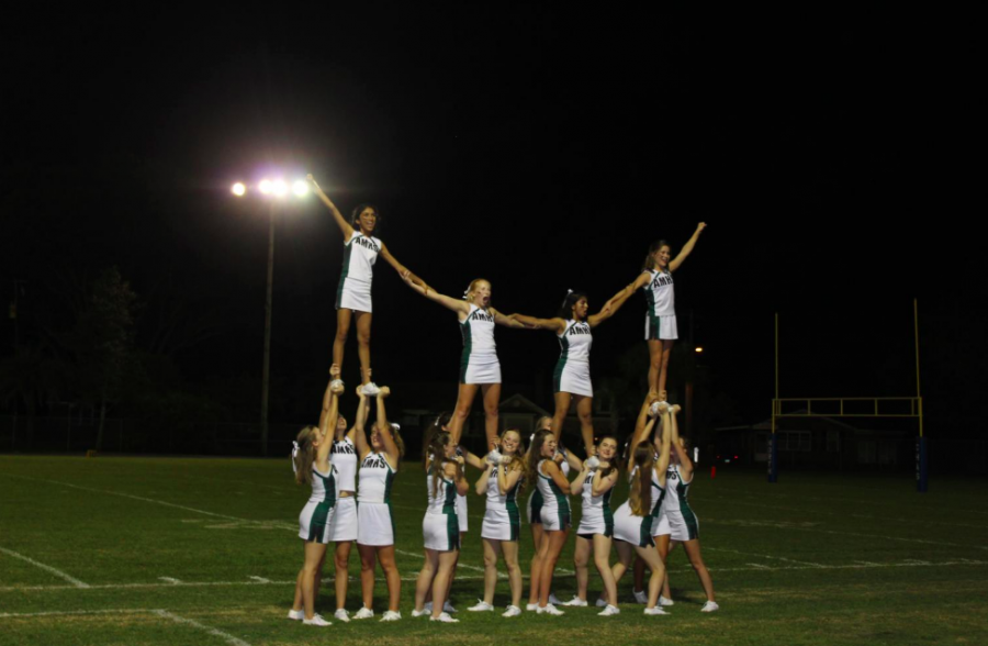 Raptor Cheer Squad Pumps Up the Crowd