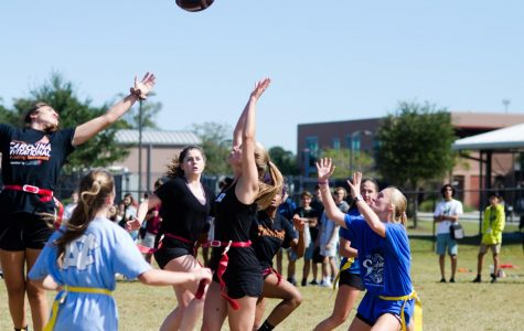 Powder Puff Photo Gallery