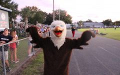 Meet the School Mascot!