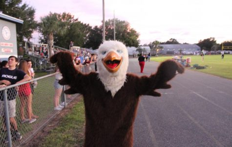 Come see Remy the Raptor at home football games!