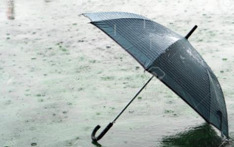 Ways to Spend a Rainy Day