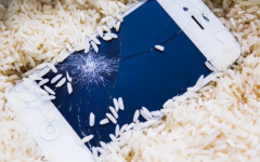Rotten to the Core: How Apple Has Ruined my Life (sort of)