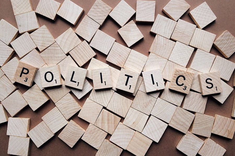 Politics+spelled+out+for+you