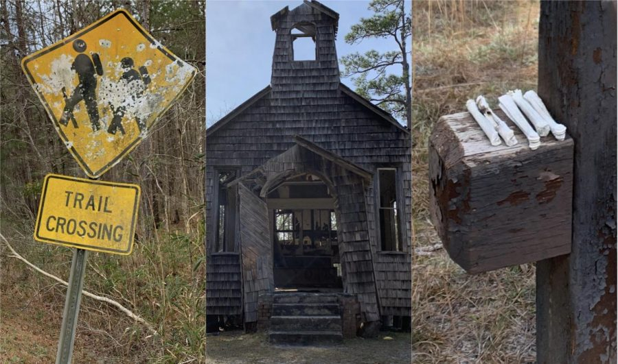 Creepy+Sightings+in+the+Francis+Marion+Forest