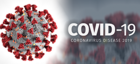 Coronavirus: What to Do
