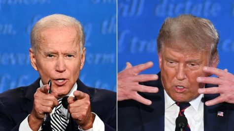 Biden or Trump? Results of our Poll!