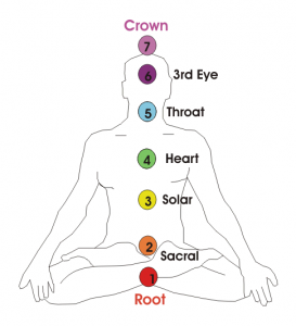 Introducing the seven chakra