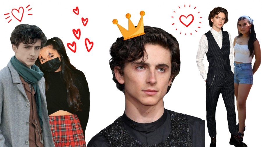 Why Timothee Hal Chalamet Should Be Your Favorite Actor