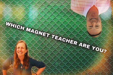 Which AMHS Teacher Are You?