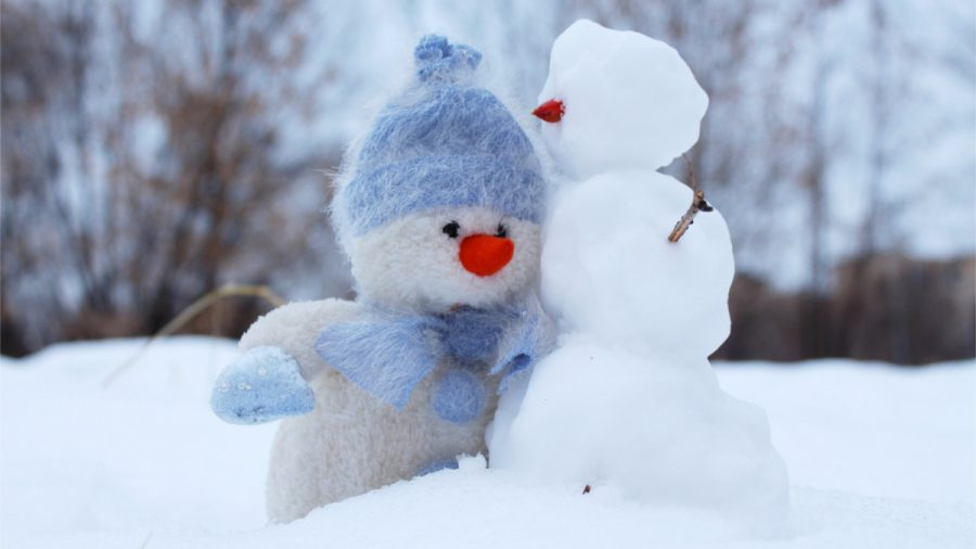 The Science Behind the Winter Blues